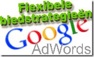 Adwords flexibele biedstrategieen
