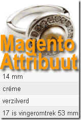 Magento attribuut